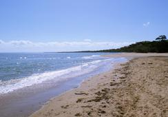 Best Western Ambassador Motor Lodge - Hervey Bay - Pantai