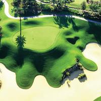 Reunion Resort & Club by 1791 Vacation Experience Golf