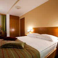 Central Hotel Guest room