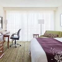 Tampa Airport Marriott Guest room