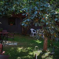 Hotel Tbilisi Garden