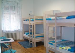 Chameleon Hostel
