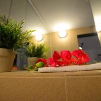 Hotel Biscuit Bathroom
