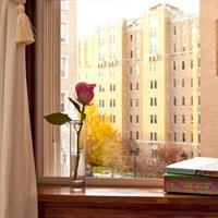 American Guest House Guestroom View