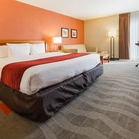 Comfort Inn & Suites Airport Guestroom