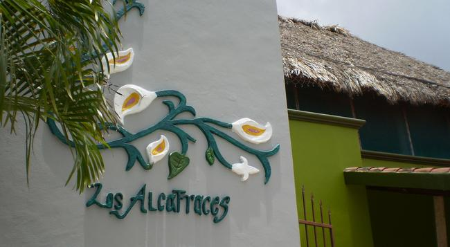 Los Alcatraces Cozumel - Cozumel - Building