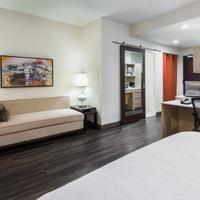 Home2 Suites by Hilton Atlanta Downtown Suite
