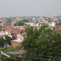 Backpacker Panda Friends - Agra