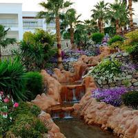 Renaissance Sharm El Sheikh Golden View Beach Resort Other