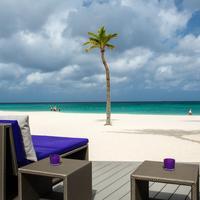 Bucuti & Tara Beach Resort - Adults Only Sundeck