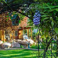 Cali Cochitta Bed & Breakfast Property Grounds