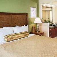 Hilton Grand Vacations at the Flamingo Suite