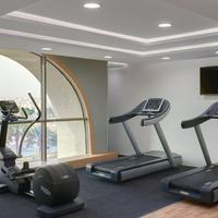 DoubleTree by Hilton Hotel Riyadh - Al Muroj Business Gate Gym