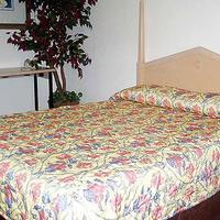 Stockton Travelers Motel Guest room