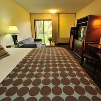 Cottonwood Suites Boise Riverside Downtown Guest room