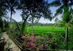 Alam Jiwa - Ubud - Pemandangan luar