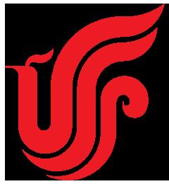 Air China International Corporation