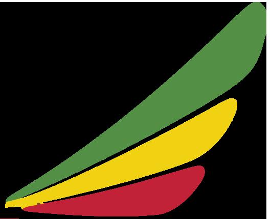 Ethiopian Airlines Enterprise