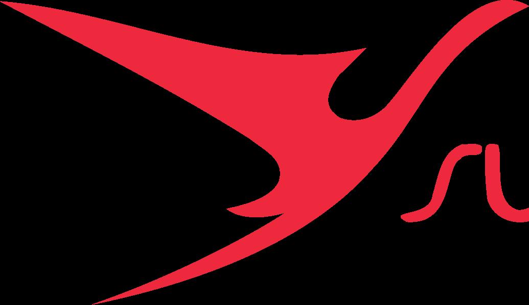 Surinam Airways Ltd.